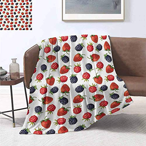 Fruits Bedding Microfiber Blanket Delicious Ripe Berry Print Strawberries Raspberries Blackberries Summer Fruits Image Super Soft and Comfortable Luxury Bed Blanket W55 by L55 Inch Plum Red