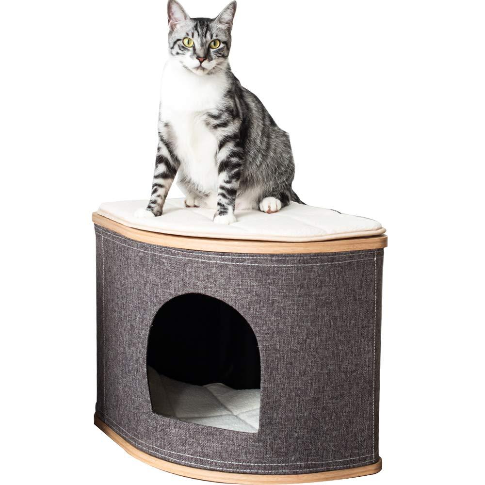 Catry - Cama para gatos en forma de abanico con madera laminada y fibra de yute para gatos de cualquier tamaño: Amazon.es: Productos para mascotas