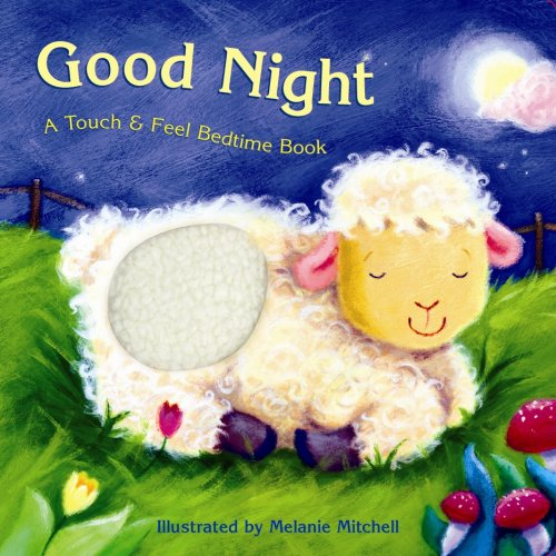 Good Night: A Touch & Feel Bedtime Book