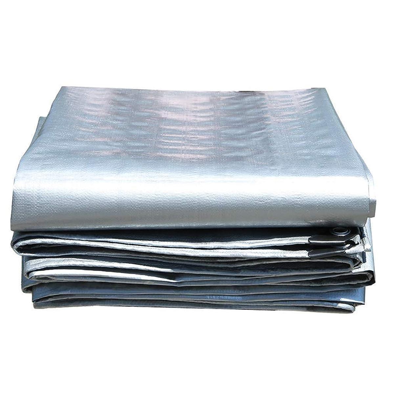 Tarp Outdoor Rain Wear Waterproof Sunscreen Tarpaulin Gray Tent Awnings for Truck ,Boat Camping, Roof Or Pool Sun Tarpaulin 0.35mm,180g/㎡ (Size : 6x8m)