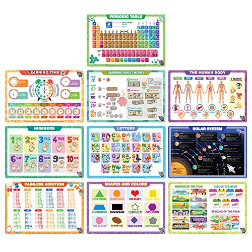 Fat Zebra Designs Educational Placemats - Set of 10 Learning Placemats - Easy Clean, Durable & Reusable Kids Table Mats - 12x17 Inches