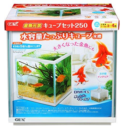 ジェックス 金魚元気 キューブセット250