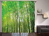 chinawh Cortinas Opacas 3D Verde Bambú Bosque Naturaleza 170X200Cm Opaca...