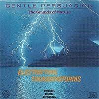 Electrifying Thunderstorm