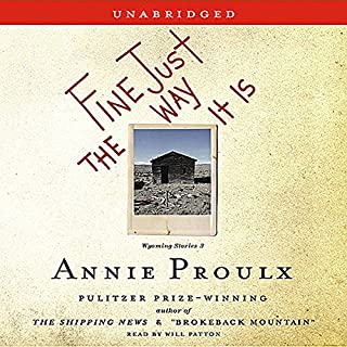 Fine Just The Way It Is audiobook cover art