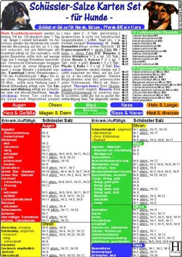 Schüssler Salze für Hunde - Tierheilkunde-Karten Set: Schüssler-Salze für Hunde,...