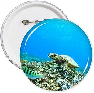 DIYthinker Océan Sciences Tortue Poisson Nature Image ronde Pins Badge Bouton Vêtements Décoration cadeau 5pcs Multicolore...