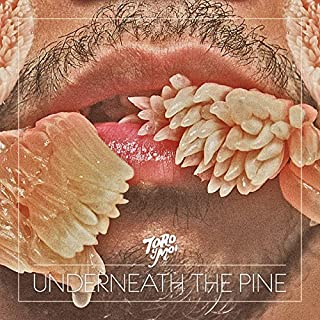 Best toro y moi underneath the pine Reviews