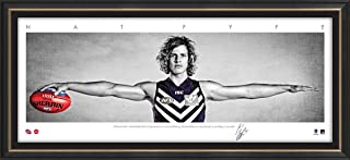 Sport Entertainment Products NAT Fyfe Mini Wings