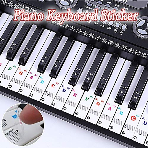 Learn More About Color Piano Stickers for 49/61/ 76/88 Key Keyboards Transparent and Removable (Newl...