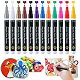 FS Paint Pens, Acrylic Paint Markers for Rock Painting Stone Ceramic Glass Wood Canvas Plastic DIY Craft, Fine Tip Daubers 12 Colors