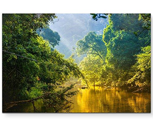 Paul Sinus Art Leinwandbilder | Bilder Leinwand 120x80cm Fluss im Regenwald