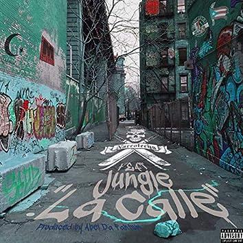 La Calle (feat. Jungle)