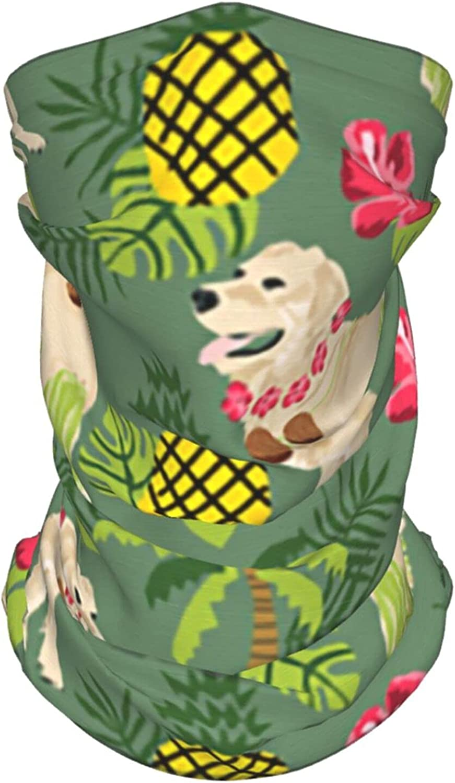 Rgolden Retriever Hula Neck Gaiter Multipurpose Headwear Ice Silk Mask Scarf Summer Cool Breathable Outdoor Sport 4 Pcs
