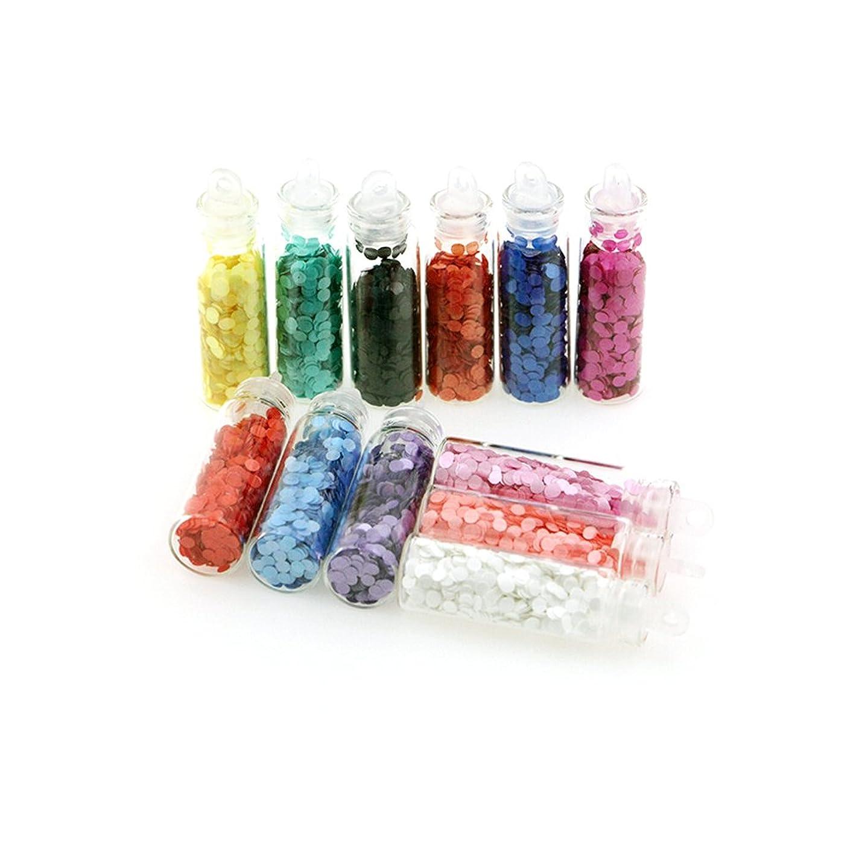品揃え偶然鋸歯状ネイルスパンコール ネイルカラー セット 12色 超薄い 2mm [並行輸入品]