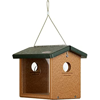 Kettle Moraine Recycled Bluebird Mealworm Feeder Hang or Mount (Green, Cedar)