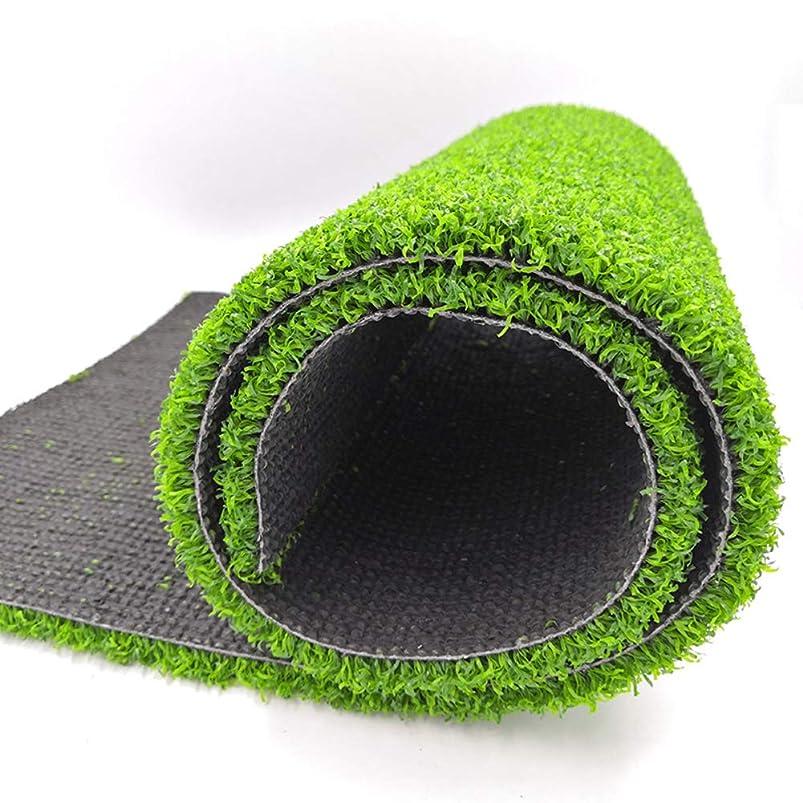 パプアニューギニアシェル建物高密度 合成芝生,15 Mm 人工芝 屋外 ペットターフ 排水の穴 屋内 装飾 テラス ターフマット-グリーン 100x700cm(39x276inch)