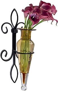 Danya B. A043-A Fleur de Lis Home Decor - Iron and Glass Wall Mount Flower Vase Sconce - Amber