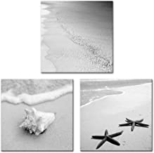 Innopics 3 Piece Black White Tropical Sea Sand Beach Picture Canvas Print Ocean Wave Shell Starfish Poster Printed Painting Retro Nature Seascape Wall Art Decor Framed for Living Room Home Decoration