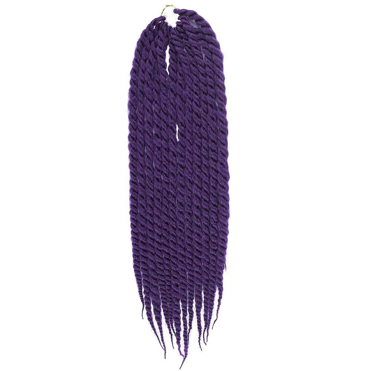 原子継続中スマッシュかつらファッション化学繊維ダブルストランドマルチカラー編組耐熱合成コスプレクールかつら