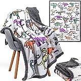 Alphabet Dinosaur Blanket - 50x60 inch Plush Mink & Sherpa Fleece Dinosaur Throw Blankets - Adorable Dinosaur Blanket for Boys or Girls, with 26 Dinos A-Through-Z