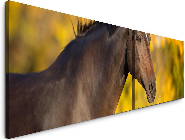 Paul Sinus Sinus Sinus Art Pferd im Herbst 180x50cm - 2 Wandbilder je 50x90cm - Kunstdrucke - Wandbild - Leinwandbilder fertig auf Rahmen B07NWBZTSS 364ff7