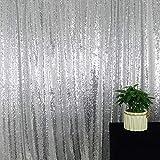 HeMiaor Silber Paillettenvorhang Backdorp 8x8FT für Raumteiler