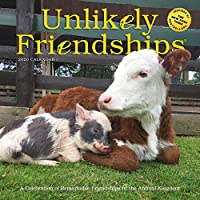 Unlikely Friendships 2020 Calendar