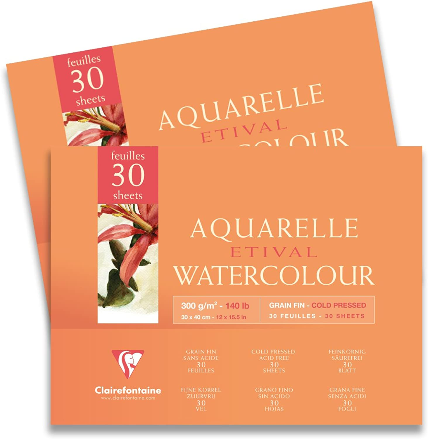 Clairefontaine 18 x x x 24 cm 140 lb Cold Pressed Etival Pad in