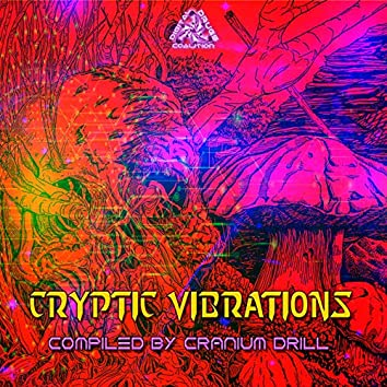 Cryptic Vibrations
