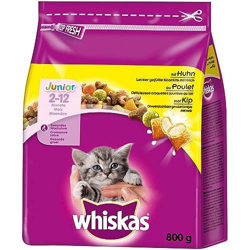 Katzenfutter Junior Amazon De