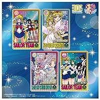 カードダス30周年記念 ベストセレクションセット 美少女戦士セーラームーン グラフィティver.