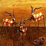 Lulu Home Set of 3 Metal Reindeer Tea Light Candle Holders, Christmas Candle Holders with 3 Sizes - 11.8' H, 10' H, 8.5' H, Christmas Reindeer Table Decoration for Holiday, Wedding, Housewarming