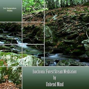 Isochronic Forest Stream Meditation