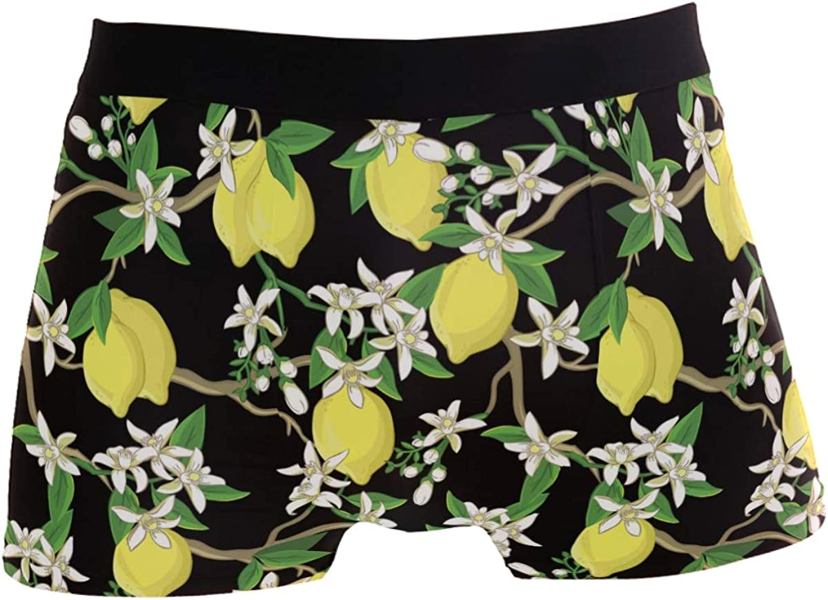 Naanle Men's Fashion Printed Waistband Boxer Brief Stretch Swimming Trunk