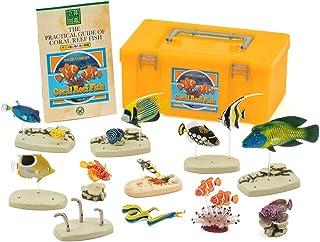 立体図鑑リアルフィギュアボックス コーラルリーフフィッシュ サンゴ礁に棲む魚の仲間