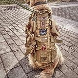 QZY Gilet de Chien Tactique, Gilet de Combat de Formation Molle avec 3 Pochettes Détachables-4 Tailles et Couleurs,Brown,S