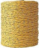 LiuliuBull Hilo de Rafia Naranja Crochet Sombrero de Sol Sombrero Hilado de Hilado Hilado de Punto Raffia Rope Regalo Materiales de Regalo 280m (Color : Gold Yellow)
