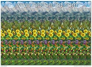 Butterfly Meadow 18