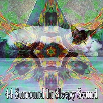 44 Surround in Sleepy Sound
