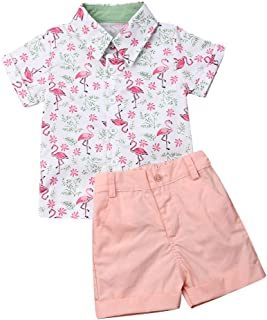 Harvest8 Toddler Baby Boys Clothes Little Kids Pink Flamingo Button Down Shirts Shorts Set 2Pcs Summer Outfits 1-6T
