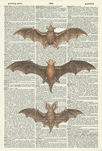 "Print on a Vintage Dictionary Page Size: Approx 8.25"" x 12.25"" Title: Gothic Bats Item does not include matting and framing Suitable for all rooms."