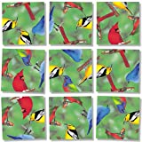 Scramble Squares Birds of North America 9 Piece Challenging Puzzle - Ultimate Brain Teaser and Mind Game for Young and Senior Alike - Engaging and Creative With Beautiful Artwork - By B.Dazzle