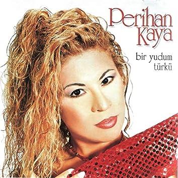 Bir Yudum Türkü