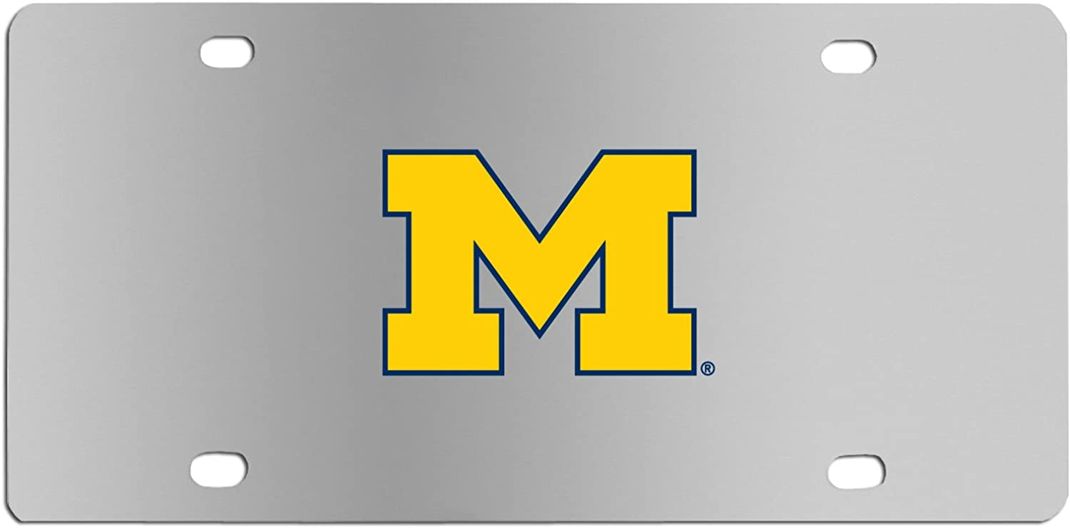 NCAA Michigan Wolverines Steel License Plate with Digital Graphics