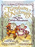 THE Tumtum & Nutmeg: The Rose Cottage Adventures (Tumtum & Nutmeg, 2)