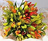 Homeland Florists Asiatic Lily Fresh Flowers Delivered, Send a Luxury Bouquet with Free UK Next Day Delivery, Gift Wrapped & Handwritten Card, Yellow Orange