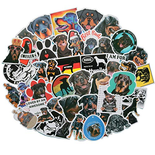 Top 10 Best Rottweiler Masked Singer Clues Comparison