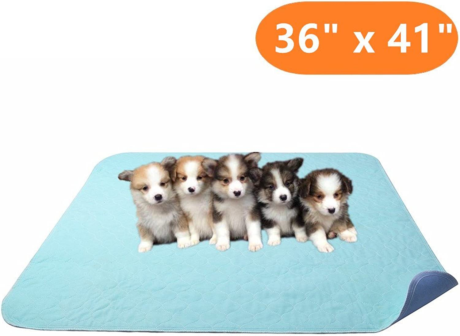 KOOLTAIL Washable Puppy Pad 36  x 41  Dog Pee Pad for Whelping Potty Training
