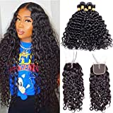 Maxine Malaysian Water Wave Wet And Wavy Virgin Human Hair Weave with Closure 4x4 Middle Part Lace...